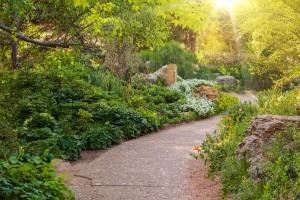 Wichtig: Pflege und tolle Pflanzen