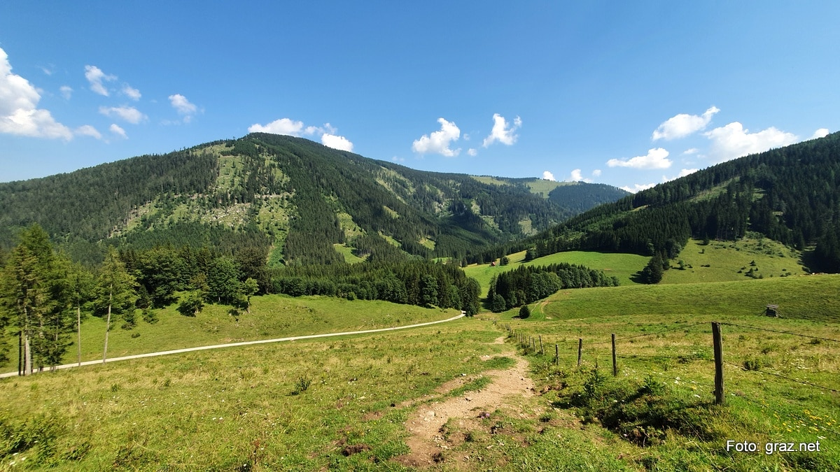 wanderung-rote-wand-tyrnauer-alm_07