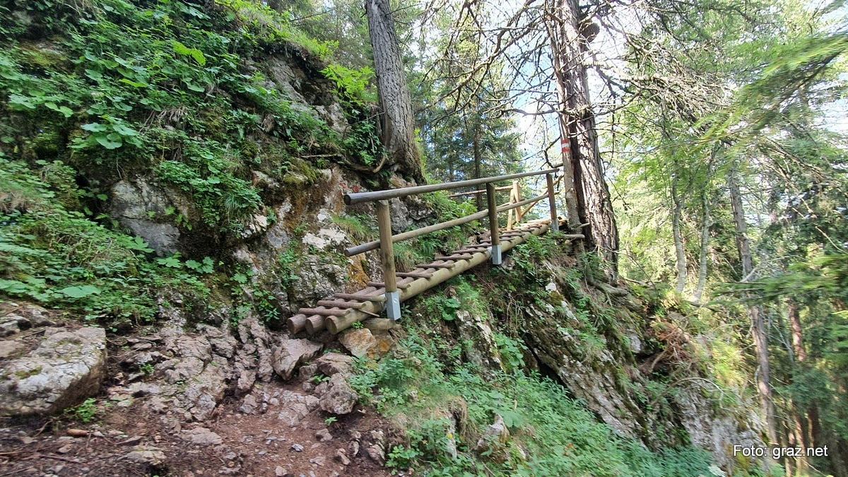 wanderung-rote-wand-tyrnauer-alm_15